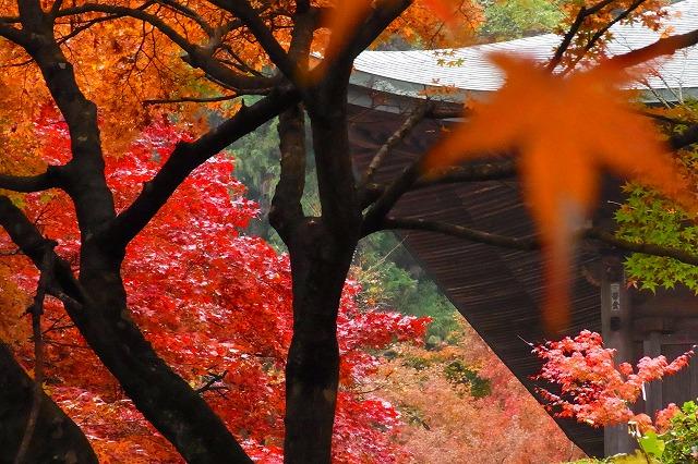 西山興隆寺7