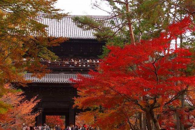 43京都南禅寺の紅葉