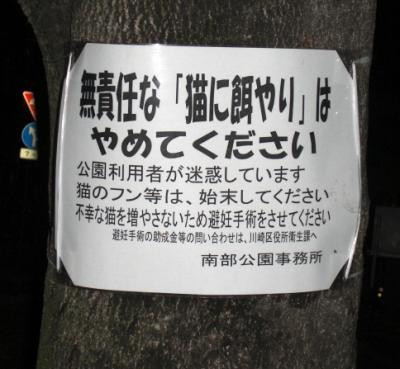 sakuramoto2_convert_20081004194626.jpg