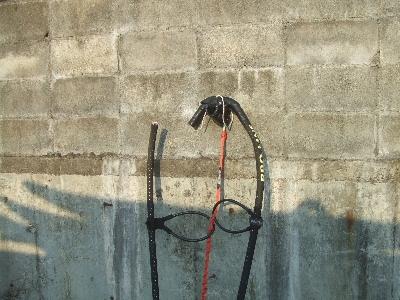 kushimoto2007_0512(007).jpg