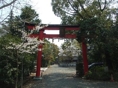 sakura2007_0408(001).jpg