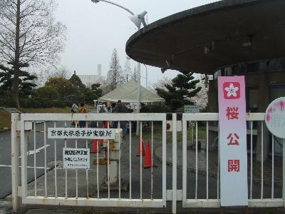 sakura2007_0408(008).jpg