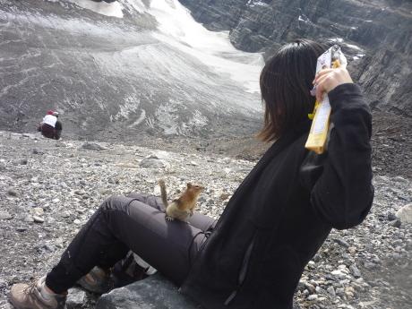 氷河とリスと、愛娘