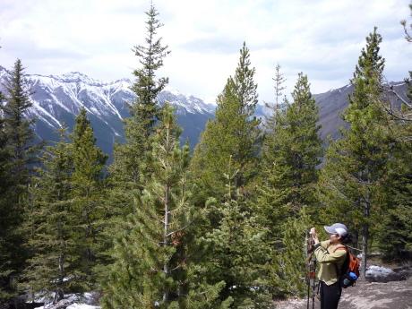 トレイルから見えるゴート連山