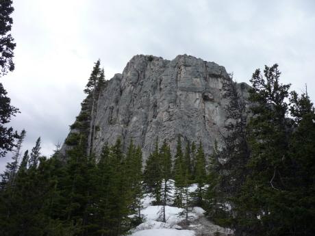 カナディアンロッキー ヤムナスカのハイキングトレイル 森林限界線あたり