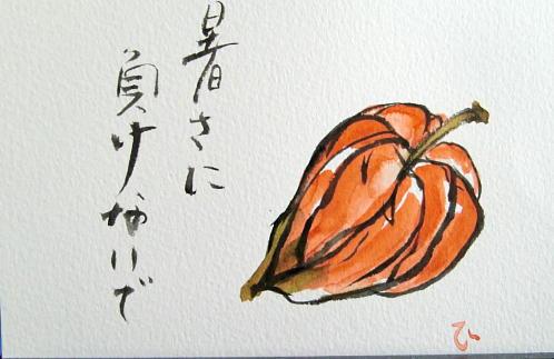 hoozuki-ssff.jpg