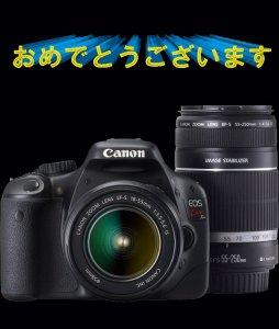 s-1302758616_20110502155318.jpg