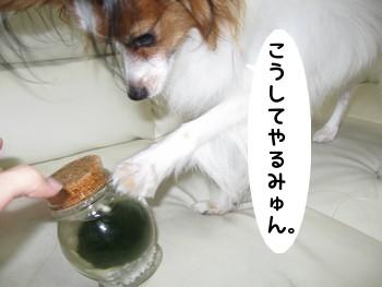 IMG_1038あ