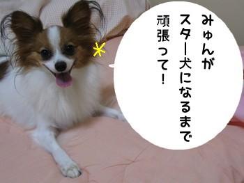 ぱそこん3