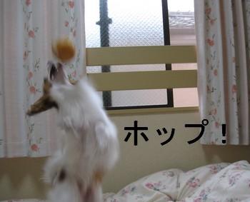 じゃんぷ3