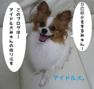 IMG_0435ia.jpg