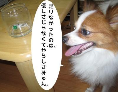 IMG_0825a.jpg