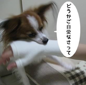 IMG_0980a.jpg