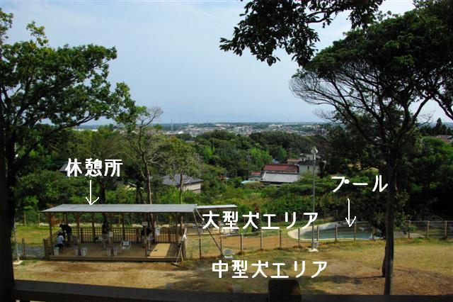2008.8月豊橋 075 (Small)