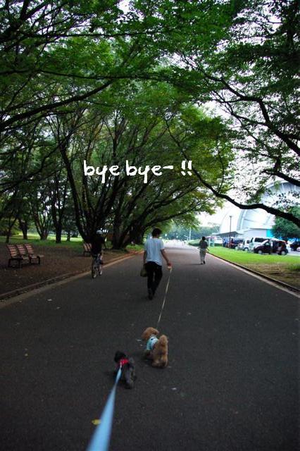 2008.9.13公園&日向ぼっこ 091 (Small)
