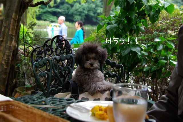 2008.9.28ロニオン 025 (Small)