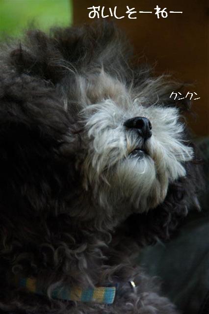2008.9.28ロニオン 066 (Small)