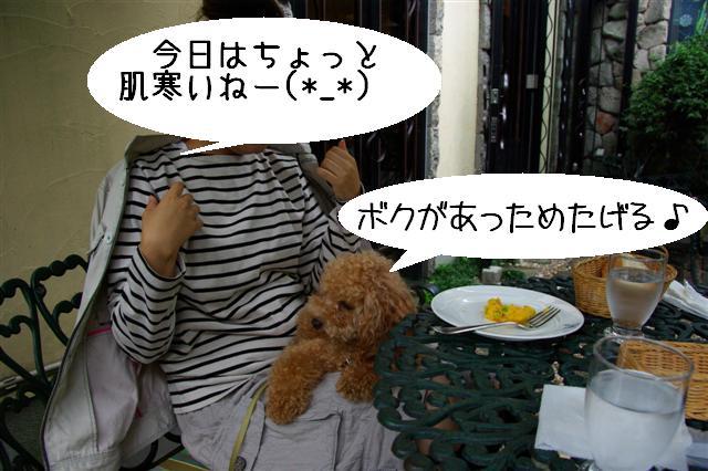2008.9.28ロニオン 026 (Small)