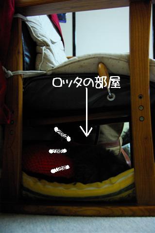 2008.12月豊橋帰省 242 (Small)