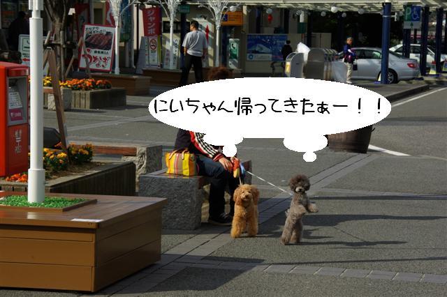 2008.12月豊橋帰省 449 (Small)