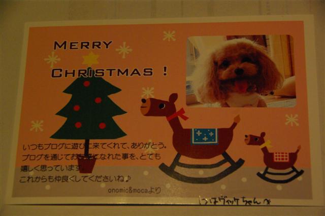 2008.12.20ジャパンドッグフェスティバル&航空公園、モカちゃんプレゼント 071 (Small)