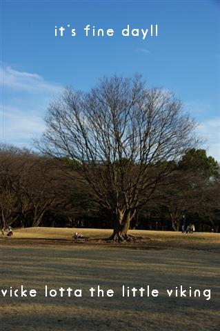 2008.12.20ジャパンドッグフェスティバル&航空公園、モカちゃんプレゼント 305 (Small)