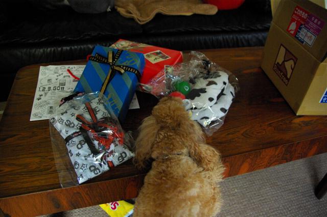 2008.12トリミング&クリスマス会&トトママプレゼント 128 (Small)