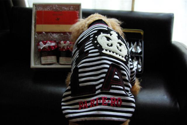 2008.12トリミング&クリスマス会&トトママプレゼント 342 (Small)