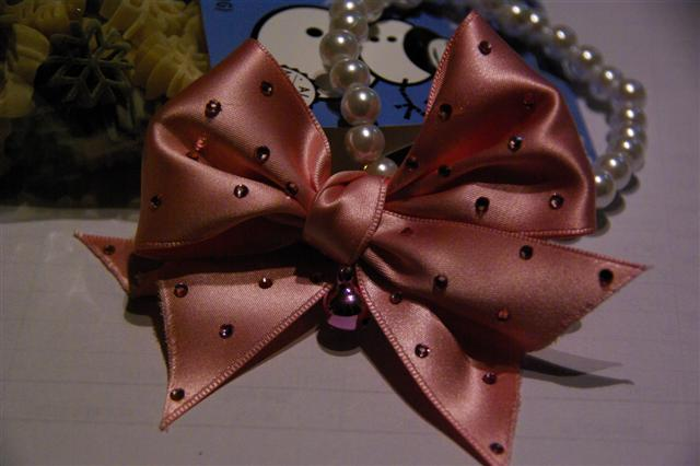 2008.12クリスマスプレゼント 107 (Small)