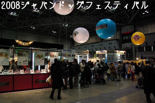2008.12.20ジャパンドッグフェスティバル&航空公園、モカちゃんプレゼント 001 (Small)