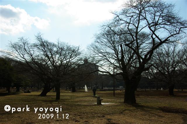 2009.1.12トトオズちゃんと 002 (Small)