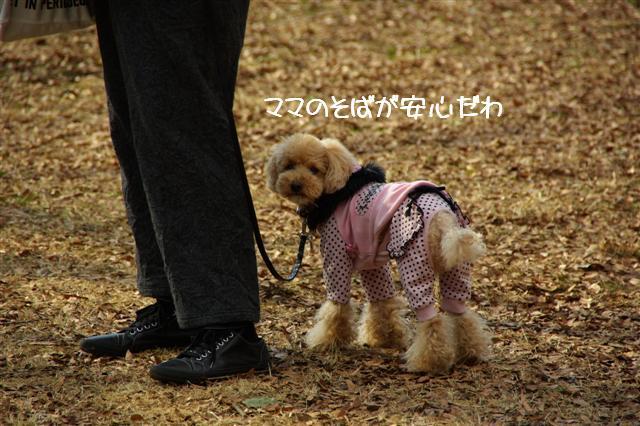 2009.1.12トトオズちゃんと 004 (Small)