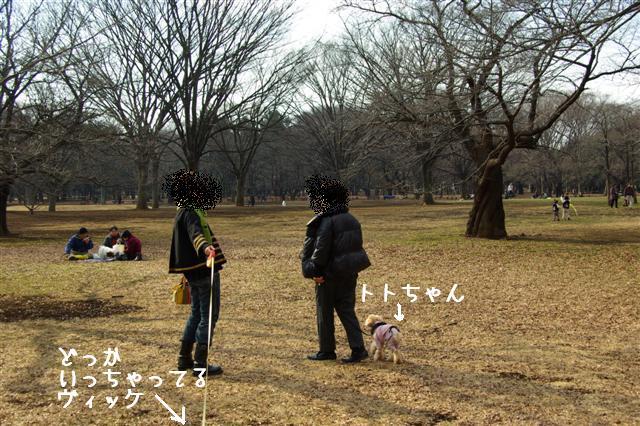 2009.1.12トトオズちゃんと 003 (Small)