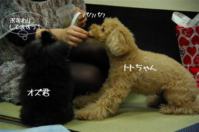 2009.1.23.25トトオズ家&wan lifeプチレッスン 124 (Small)