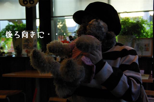 2009.1.23.25トトオズ家&wan lifeプチレッスン 231 (Small)