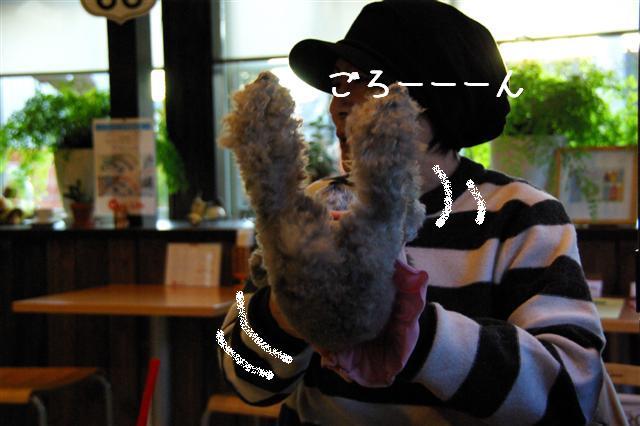 2009.1.23.25トトオズ家&wan lifeプチレッスン 233 (Small)