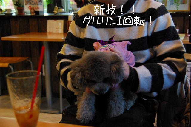 2009.1.23.25トトオズ家&wan lifeプチレッスン 237 (Small)