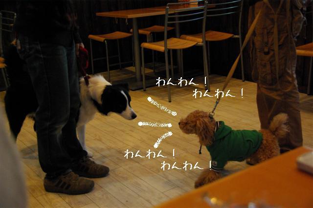2009.1.23.25トトオズ家&wan lifeプチレッスン 248 (Small)