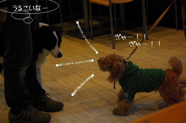 2009.1.23.25トトオズ家&wan lifeプチレッスン 251 (Small)