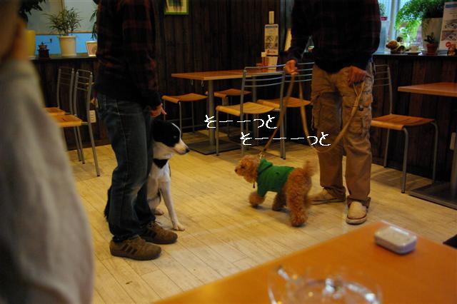 2009.1.23.25トトオズ家&wan lifeプチレッスン 255 (Small)