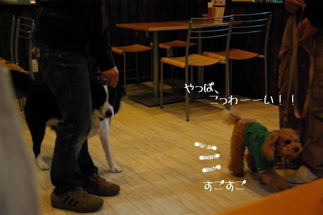 2009.1.23.25トトオズ家&wan lifeプチレッスン 257 (Small)