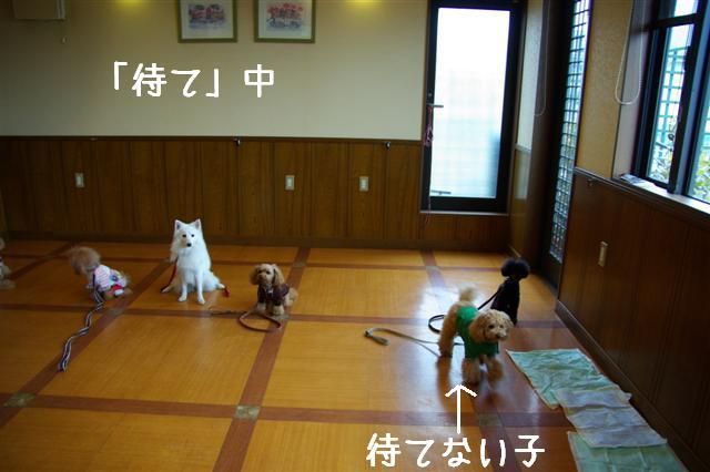 2009.1.29レッスン 052 (Small)