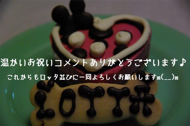 2009.2.8二子デプト 049 (Small)