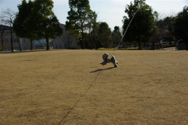 2009.3.12運動公園&ばじカフェ 024 (Small)