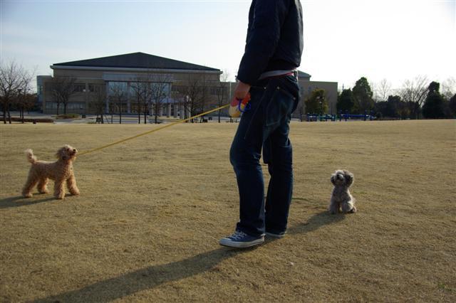 2009.3.12運動公園&ばじカフェ 259 (Small)