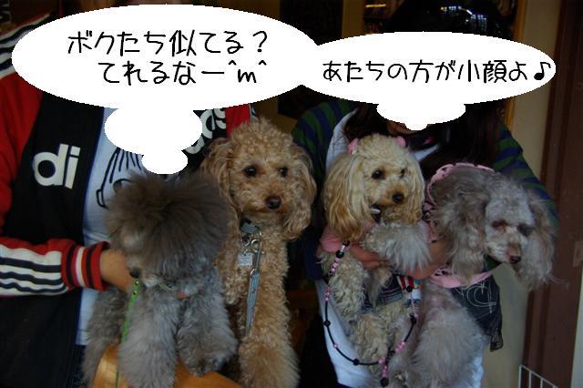 2009.3.12運動公園&ばじカフェ 404 (Small)