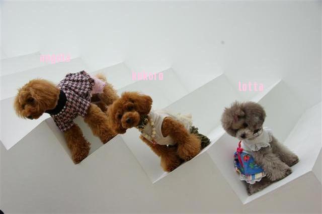 2009.3.14スタジオ 742 (Small)