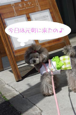 72009.3.18横浜 001 (Small)