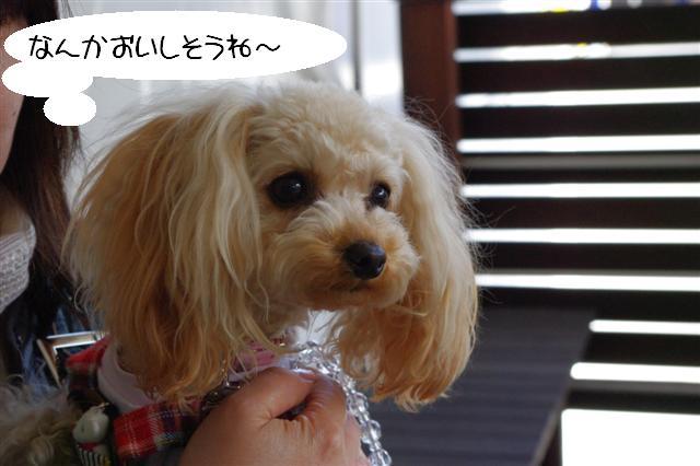 72009.3.18横浜 047 (Small)