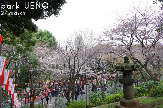 2009.3.27上野公園花見 016 (Small)